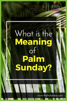 What is the Meaning of Palm Sunday?|Holy Week|Christian Living|Faith Life|Bible|Church Year|Lent