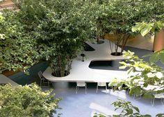 Gallery of Tree Desk Garden / Da landscape - 24