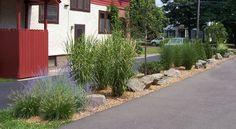 Planting strip between driveways