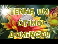 FALANDO DE VIDA!!: Tenha um ótimo domingo - receba o que Deus te diz ...