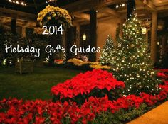 Holiday Gift Ideas for everyone on your list! Top toys, educational toys, Gag Gifts, Experience Gifts & more!