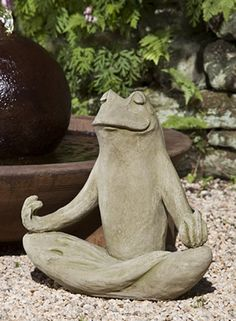 Totally Zen Frog cast stone frog statue made by Campania International find at Blossoms, Birds, & Beyond.  He is leading us at yoga time.