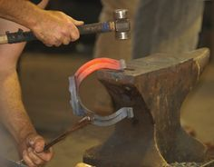 Choosing a Farrier for Your Horse