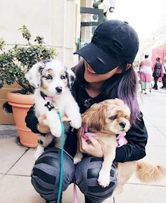 Arden & Chewy Cho