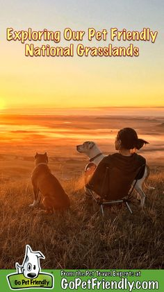 Exploring Our Pet-Friendly National Grasslands Hiking Dogs, Camping And Hiking, Rv Camping, Dog Friends, Friends In Love, Road Trip With Dog, Dog Travel, Travel Tips, Great Places To Travel