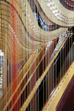 HARPS: So many strings! Imagine tuning them all...