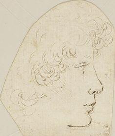The head of a youth Italian Renaissance, Renaissance Art, Leonardo Da Vinci Renaissance, Figure Drawing, Painting & Drawing, Drawing Sketches, Art Drawings, Classical Art, Illustrations