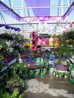 Proven Winners at Calloway's Nursery in North Arlington North Arlington, Proven Winners, Store Displays, Display Ideas, This Is Us, Fair Grounds, Nursery, Amazing, Garden