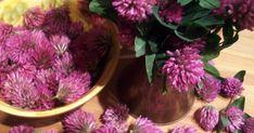 Czerwona koniczyna, od pewnego czasu już kwitnie w pełnej swej krasie i aż się prosi, żeby coś z nią zrobić. Tym razem p ostanowiłam zr... Floral Wreath, Vegetables, Nature, Alcohol, Floral Crown, Naturaleza, Vegetable Recipes, Nature Illustration, Off Grid