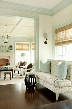 light aqua wall color, light furniture with teal and dark brown accents. Green topiaries