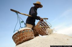 Worker carrying baskets of salt crystals,  Madura, Indonesia