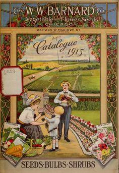 Catalogue 1915 : seeds, bulbs, shrubs