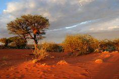 namibia | Namibia Reisen 2014: Ein einziges Naturschauspiel