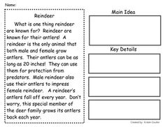 3rd or 4th Grade Main Idea Worksheet about The Meerkat ...