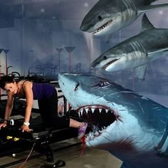 Ruthie put up a good fight! She will be missed RIP my friend anyone know a great #lagreefitnessinstructor ?  #sharknado3 #sharknado #sharkattack #RIP #Lagree #coreplusfitness #oclife #Fitness #megaformer #fitnesslifestyle #fitnesslife #gymlife #fitfam #fitforlife #nowhiring #shefoughthard