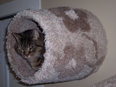 Cat bed wall mounted -The Kozy Kubby