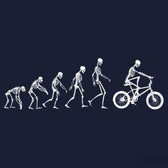 Teoria evolucionista do BMX