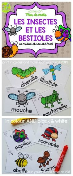 Collection Mur de mots - Les Insectes & les bestioles. 16 French Insect Word Wall vocabulary cards - in colour AND black & white. Perfect for adding to your word wall this spring. Print in colour to make your word wall POP, or print in black & white and colour yourself (or have your students colour!) to save on ink. You can also use the black & white to create student booklets or posters. The possibilities are endless!