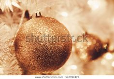 Find Christmas Ornaments Gold Ball Light Bulb stock images in HD and millions of other royalty-free stock photos, illustrations and vectors in the Shutterstock collection. Christmas Ad, Christmas Bulbs, Ball Lights, Caramel Apples, Light Bulb, Photo Editing, Royalty Free Stock Photos, Holiday Decor, Image
