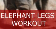 The Elephant Legs Calisthenics Workout
