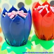 Patriotic - 1 Blue & 1 Red Fire Blossom  www.fireblossomcandle.com  A unique cake candle for your birthday party