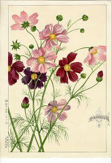 Konan Shin Hanga Woodblock Prints 1917  http://madamkartinki.blogspot.com/2012/05/konan-shin-hanga-woodblock-prints-1917.html