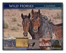 ProSlaughter Group, Protect the Harvest, Apparently Harasses NV Wild Horses | Wild Horse Education
