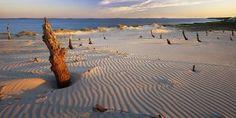 Wędrujące piaski na Pustyni Północy, gmina Smołdzino, powiat słupski, województwo pomorskie, Polska