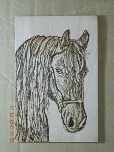 Horse Luisa