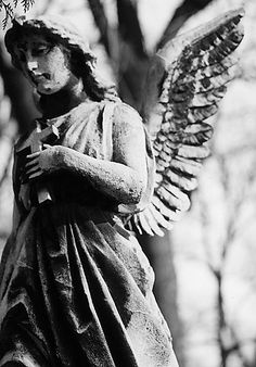"""Todo anjo é aterrorizante"" (Every angel is terrifying) - Rainer Maria Rilke"