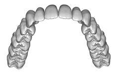 Upper jaw teeth anatomy 3D Model STL   CGTrader.com