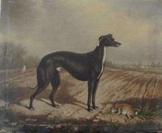 Old painting circa 1870, signed W.E. Turner (William Eddowes) is of the very famous irish greyhound who won the Waterloo Cup in 1868, 1869 and 1871  Master McGrath.