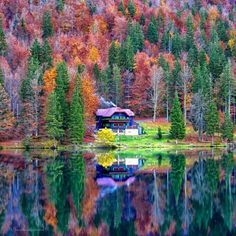 Beautiful Sites, Beautiful World, Beautiful Places, Beautiful Pictures, Autumn Scenery, Autumn Trees, Nature Images, Nature Pictures, Pond Life