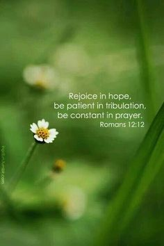 ~Romans 12:12~May Jehovah bless you today.