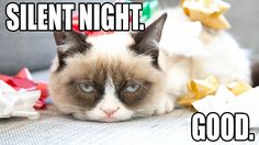 Tard the Grumpy Cat strikes again in this awesome cat photo filled album. Waste some time and take a break to check out this Grumpy Cat album Grumpy Cat Humor, Funny Cat Memes, Funny Cat Videos, Funny Cats, Grumpy Kitty, Cats Humor, Funny Animals, Animal Funnies, Animals Images