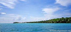 View of Half Moon Caye while sailing from the Blue Hole to the Half Moon Wall dive site. Belize Barrier Reef Reserve System | Belize