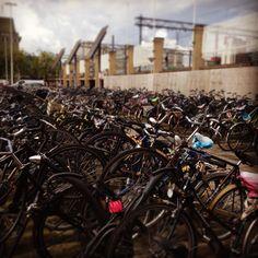 Holanda el gran país de las bicicletas. Estación de tren en eindhoven. #Holanda #vacaciones #lugaresespeciales #eindhoven #bicicletas