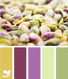 Pistachio Hues~Design Seeds. (Radiant Orchid colorway ideas)