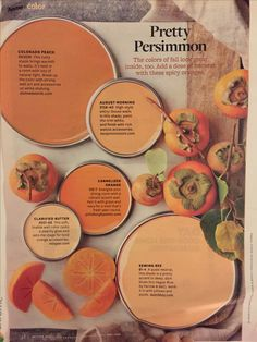 Color Inspiration Better Homes and Gardens Pretty Persimmon Room Colors, Wall Colors, House Colors, Accent Colors, Paint Color Palettes, Paint Color Schemes, Orange Color Schemes, Garden Painting, House Painting