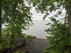 The reason for Burton Island's popularity is that campers can book isolated, waterfront camp sites with stunning views of Lake Champlain.