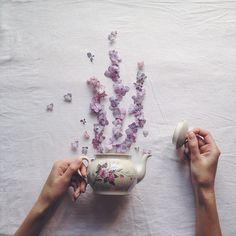 Poetic Scenes Of Teacups