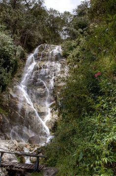 Inca Trail, Peru.  Photo: Don Holmgren, via Flickr