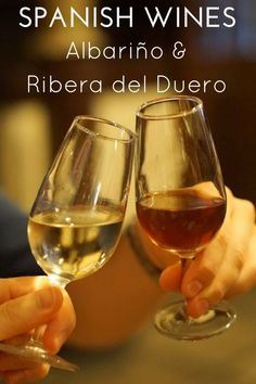 Barcelona Has Cava, Andalusia Has Sherry - And We Love It! Here's Where To Drink Sherry In Seville Looking for an authentic place to try southern Spain's famous sherry? Live the sherry tradition like a local in these places to drink sherry in Seville! Wine Tasting Near Me, Wine Coolers Drinks, Sonoma Wineries, Sangria Wine, Spanish Wine, Spanish Food, Wine Brands, Wine Bottle Labels, Bottle Opener