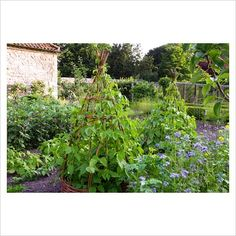 wigwams...I am making these for a few of my smaller squash and melons this year, it will be a major space saver!