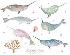 Watercolor Whale, Watercolor Design, Watercolor Animals, Tattoo Watercolor, Narwhal Drawing, Narwhal Tattoo, Cute Illustration, Watercolor Illustration, Digital Illustration