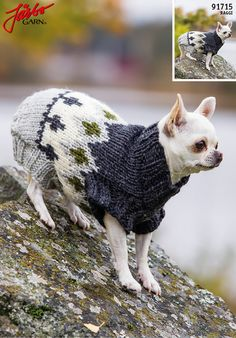Nordic inspired sweater for our furry friends.