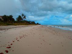 Naples Florida Beach walks