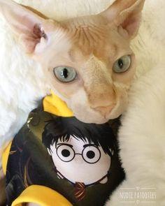 Harry Potter Wizard Cat Shirt/Sphynx Cat Fleece Clothes / clothes for cats/ cat overalls /cat shirt/ cat sweater/ cat sweatshirt/ pet sweater/ Sphynx cat clothes/ Sphynx clothing / cats clothes/ shirt for cat/ cat clothes/ tattoo/ skull/ designer cat clothes/ cat pjs
