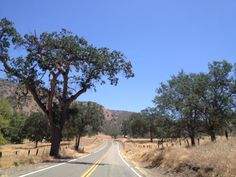 California State Route 245, east of Kings Canyon and Sequoia National Park. A motorcyclist's dream!