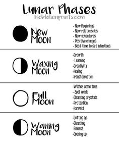 paganism witchcraft & paganism witch - paganism witchcraft - norse paganism witches - wicca witchcraft and paganism - paganism vs wicca vs witchcraft - paganism and witchcraft - celtic paganism witches - paganism men male witch Wiccan Spells, Magick, Modern Witch, Moon Magic, Book Of Shadows, Spelling, Positivity, Writing, Words